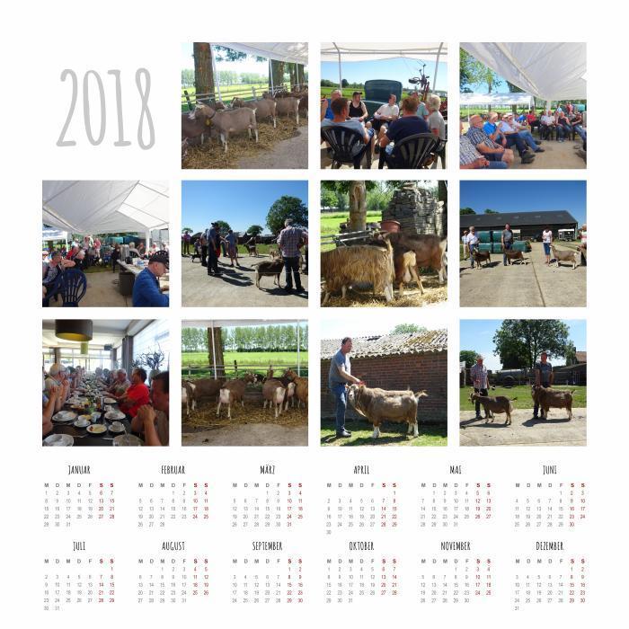 mijn_collage (17).jpg kalender studiedag.