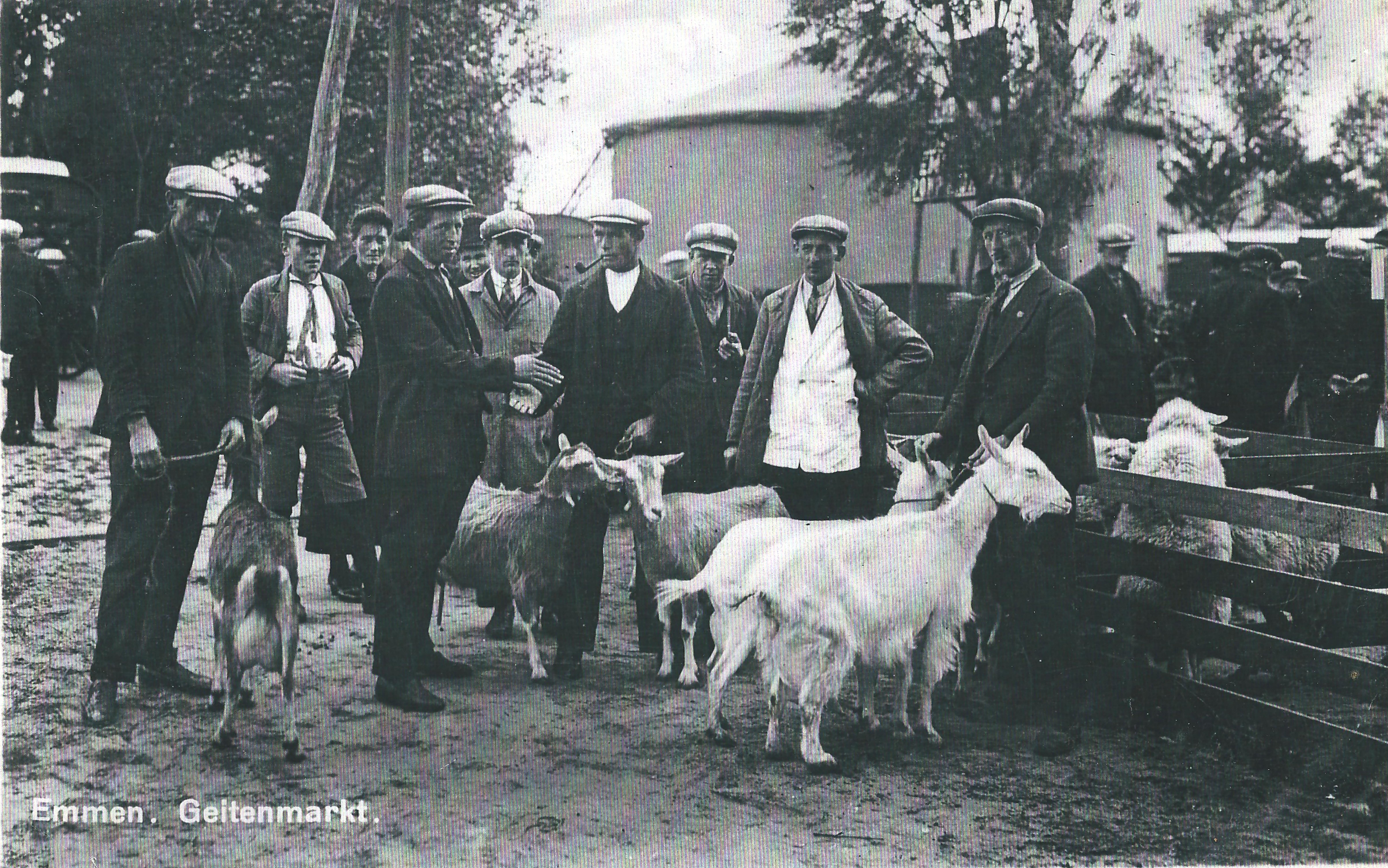 Emmen Geitenmarkt 1934