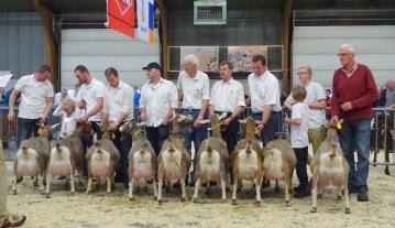 2015 Barneveld. Toggenburger geiten geboren in 2011-2012. 1a. Sweelhoeve Elsje 86; 1b. Sweelhoeve Grietje 38; 1c. Suzanne 14; 1d. Bregje 10 v/d Enkhoeve; 1e. Boukje 57; 1f. Roelientje 98; 1g. Renske's Frederika JH; 1h. Sarie 10 fd Rykswei; 1i. El Barca 116.