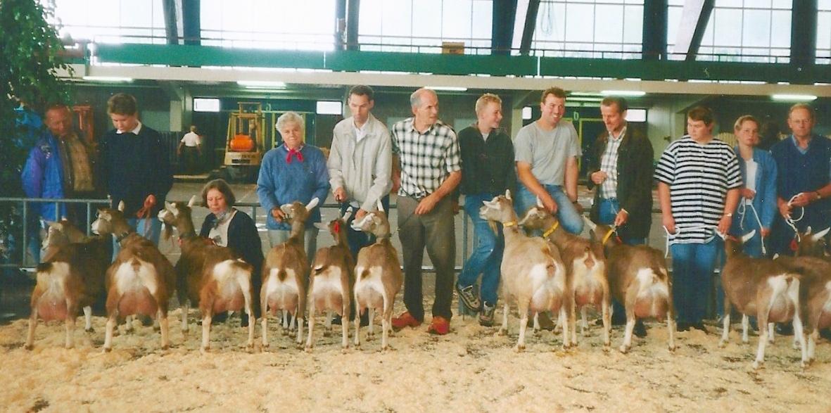 vebo-leiden-1998-eigenaarsgroepen-toggenburger-geiten1